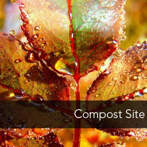 Image Link to Compost Site page